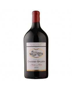 Château Chasse-Spleen Double Magnum