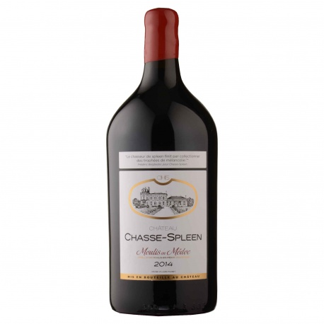 Château Chasse-Spleen - Double Magnum