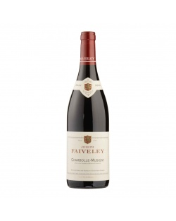 Domaine Faiveley - Chambolle Musigny